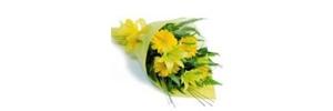 Çakır Uluslar Arası Çiçekçilik Ve Organizasyon