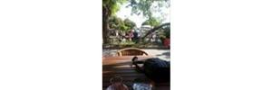 Uzunköprü Kardeşler Aile Çay Bahçesi